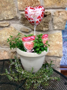 pot of herbs and Valentine's Day decorations